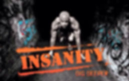 Insanity classes in essex with Fitjess Fitness RM3