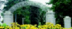 WEBSITE-CHANGES-Apr.21-632x261.png