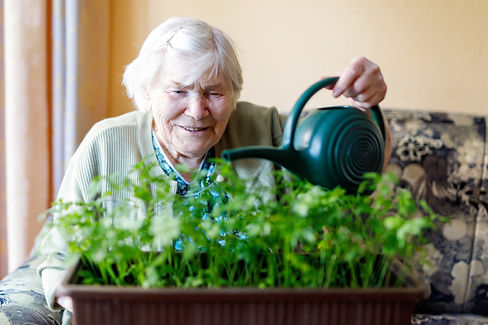Active Senior woman of 90 years watering