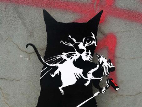 TABBY Cat vs. BANKSY Rat – Pest Control