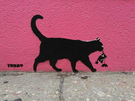 TABBY Cat vs Banksy Umbrella Rat