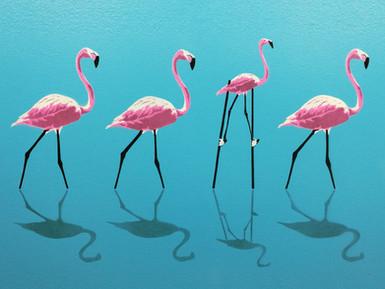 Flamingo – Rise Above