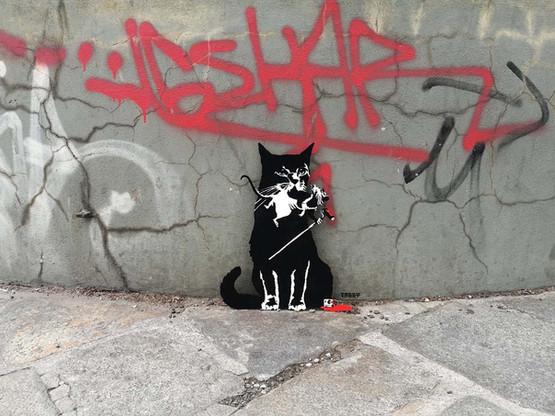 TABBY Cat vs Banksy Rat - Pest Control