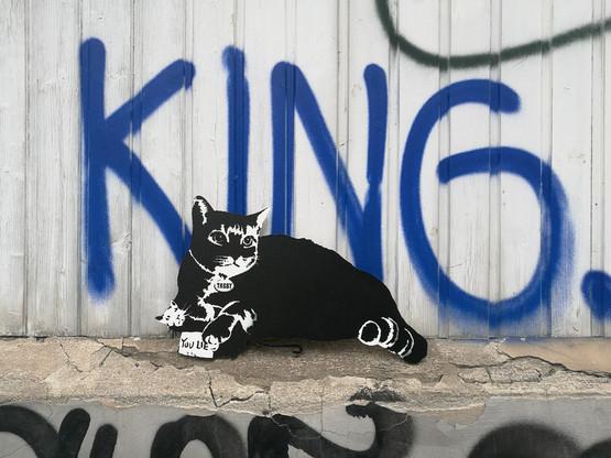 TABBY Cat vs Banksy Rat - You Lie