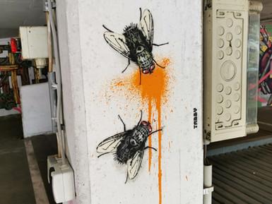 Fly Splatter