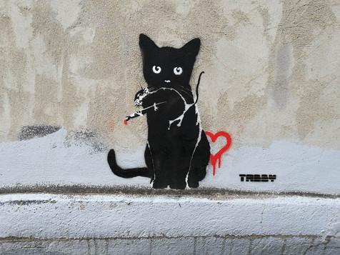 TABBY Cat vs Banksy Rat - Street Heart
