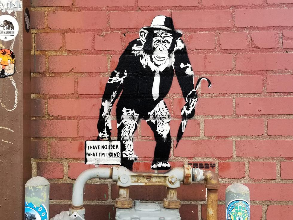 Working chimp No Idea 7