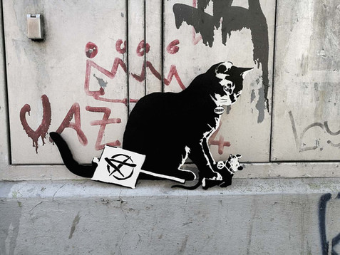 TABBY Cat vs Banksy Rat - Anarchy