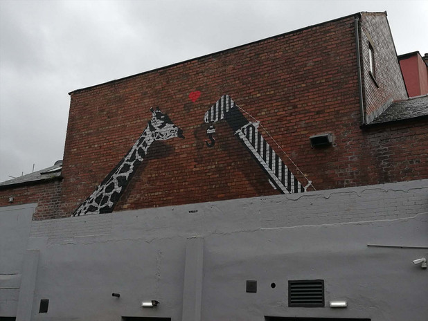 Giraffe 9.jpg