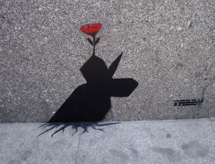 flower bomb 2.jpg