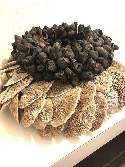Naturkranz Kokosfrucht  schwarz 30cm