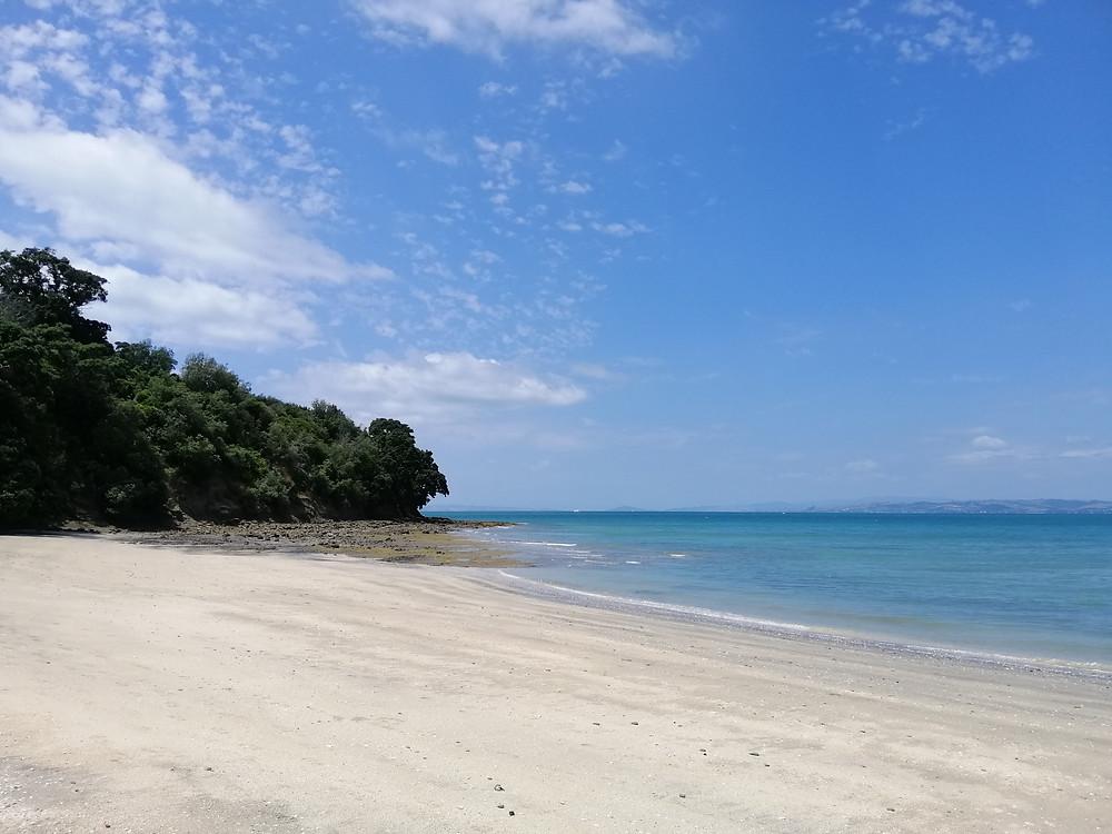 Deserted Motuihe Beach