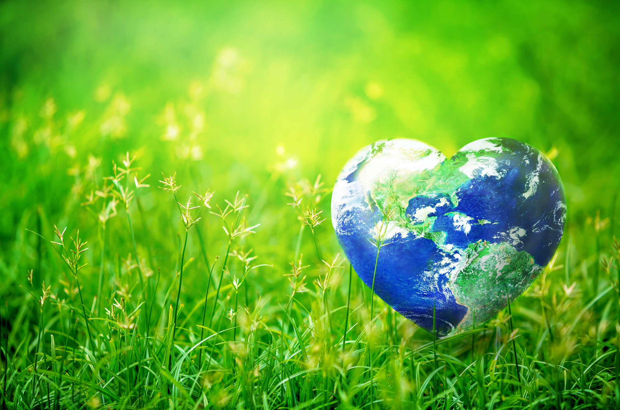 April 22nd – Earth Day
