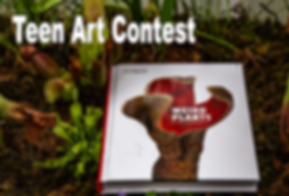 art_contest_photo.png