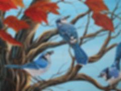 Treetop  Chatter.JPG