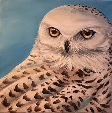 Snowy Owl Acrylic  12 x 12