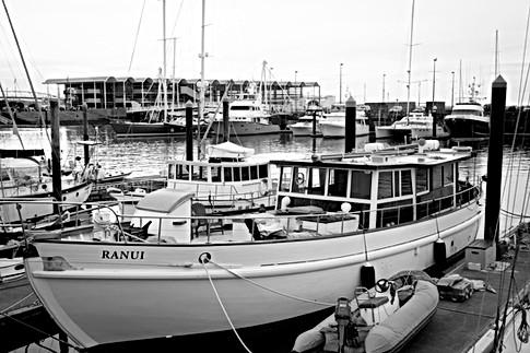 Ranui - Auckland Marina