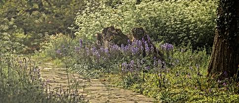 Irish garden path