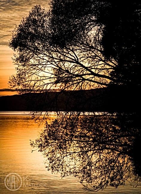 Rotorua Sunrise