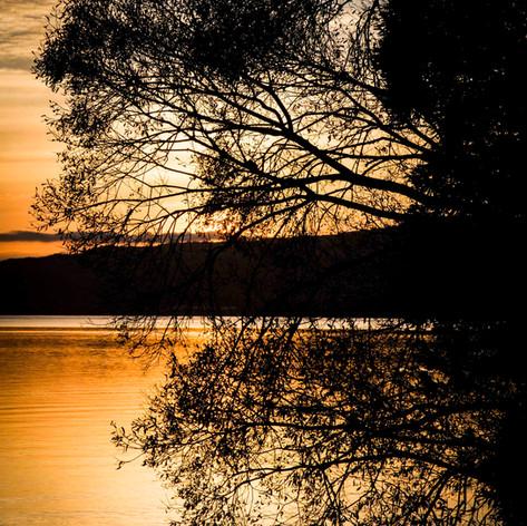 Rotorua Sunrise.jpg