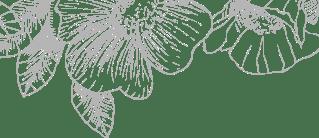 Complimentary IPL Rosacea Treatment