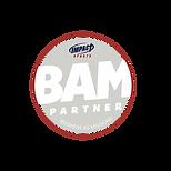 Main_BAM Impact Sports Logo Curve.png