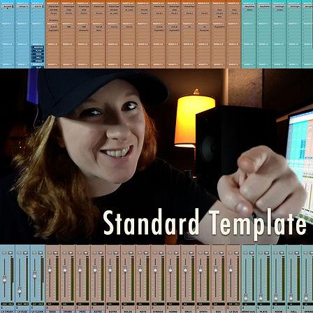 Standard-Temp-2.jpg