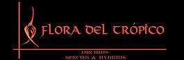 cropped-CABECERA-HORIZONTAL-2017-1.jpg