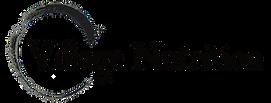 Village Nutrition Logo Banner web header