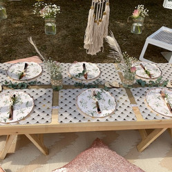 Hen Picnic Table