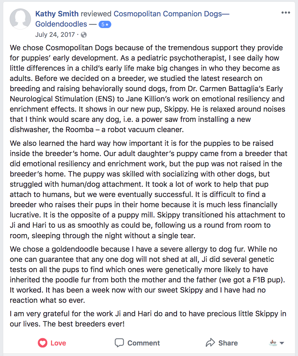 Cosmopolitan Companion Dogs Review