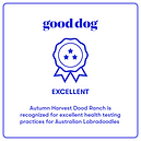 Good Dog Excellent Logo.png