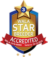 Autumn Harvest Dood Ranch WALA Star Logo