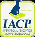 IACP transp.png