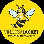yellow_jacket_250.png