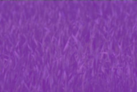 Purple Grass.png