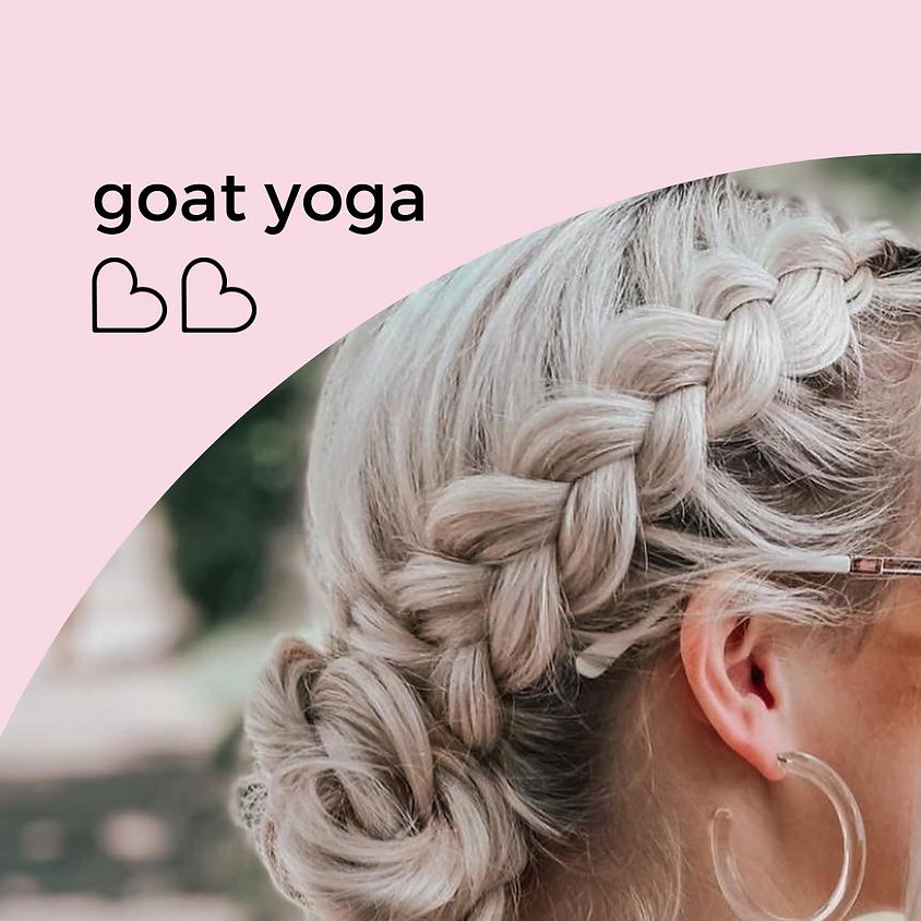 goat yoga ♡︎