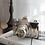 Thumbnail: Silver Ceramic Nostalgia Camera