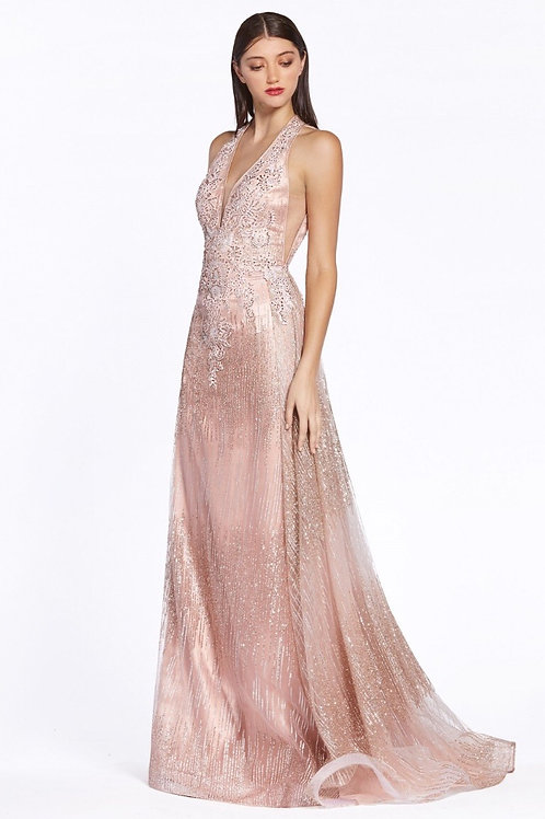 Illusion Neckline Prom Long Dress