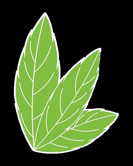 Green%20Leaf%20Trading%20Co%20Leaf%20Log