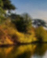 Autumn Wildlife Trail.jpg