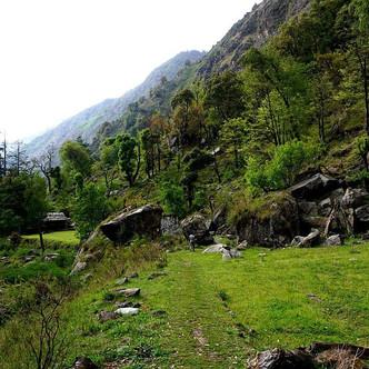 The great himalayas National park, Himac