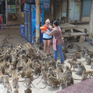 Hua Hin Bangkok (3)