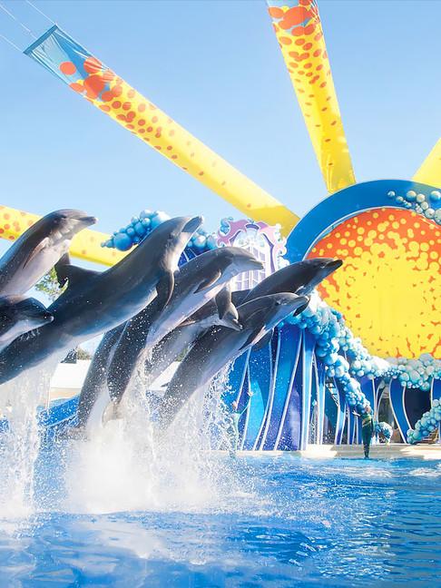 Sea world marina park