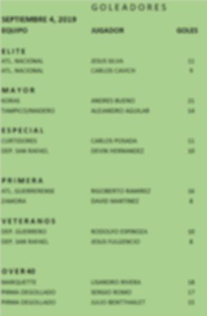 GOLEADORES-PAG2019.png