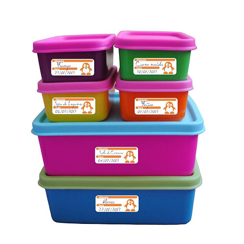Etiquetas para freezer (6,5x2,5cm) - 100 unidades