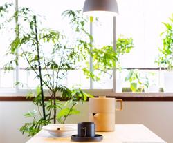 shiroyama gerden apartment
