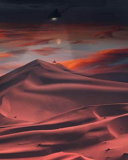 desert light cópia.jpg
