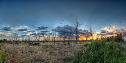 Evening Falls on the Mesa Verde Plateau
