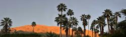 small Palm Springs Dawn, California